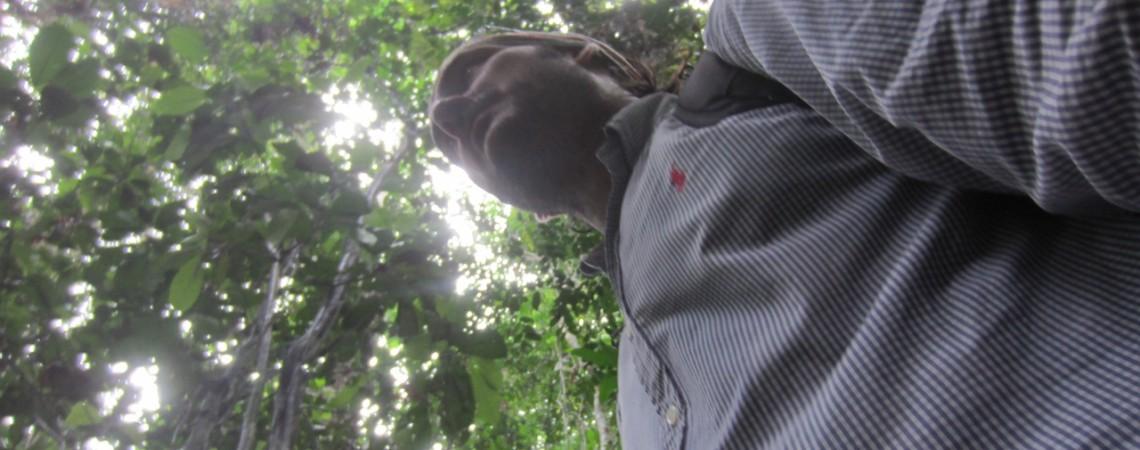 REPÚBLICA CENTROAFRICANA: perdido en la SELVA