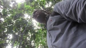 Perdido en la selva